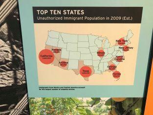 非正規移民人口